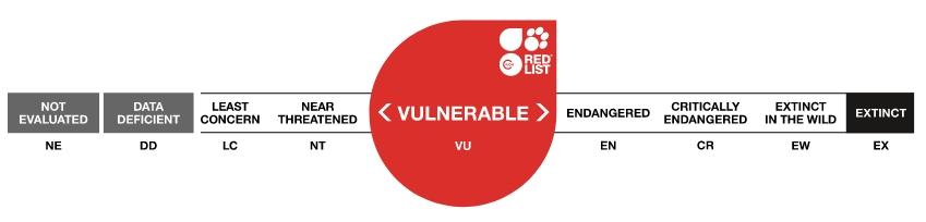 classement espece vulnérable UICN